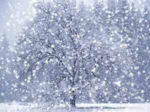falling-snow-wallpaper