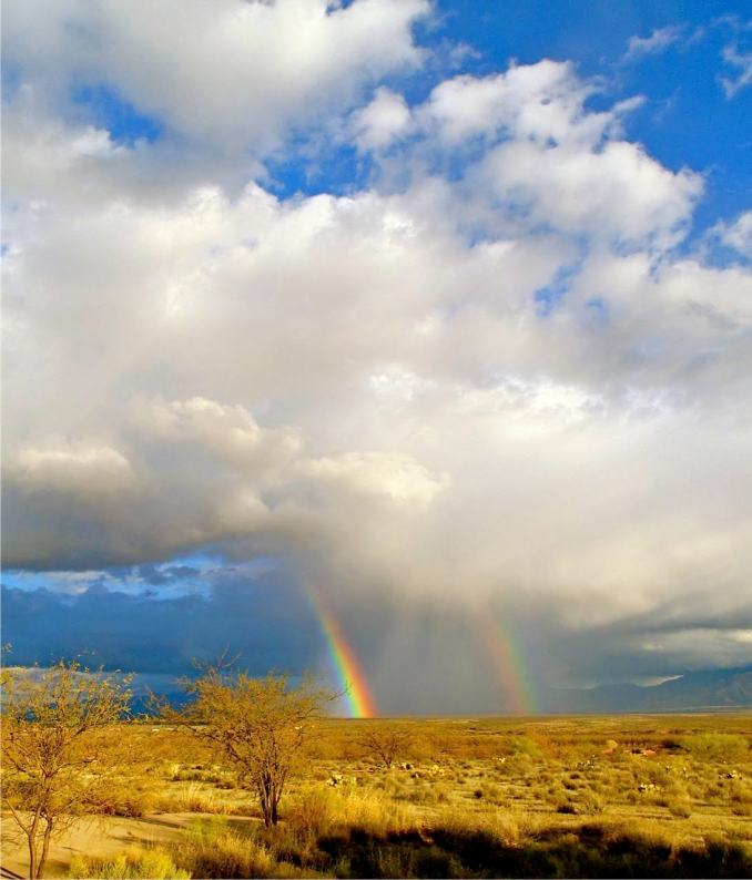 rainbow in the dessert