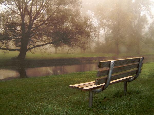 park-bench-resized-600