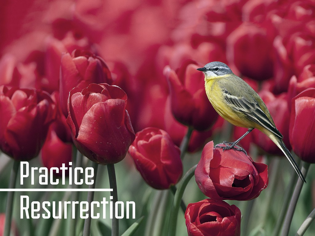 practice-resurrection